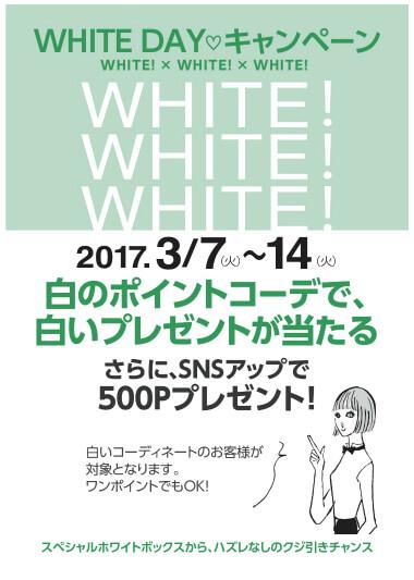 WHITEPOP のコピー .jpg
