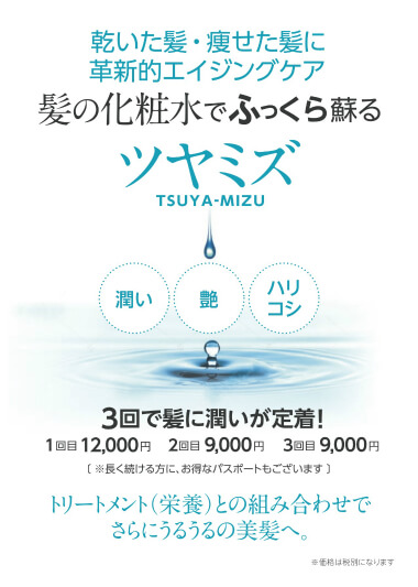 tsuyamizu161226_2 のコピー .jpg